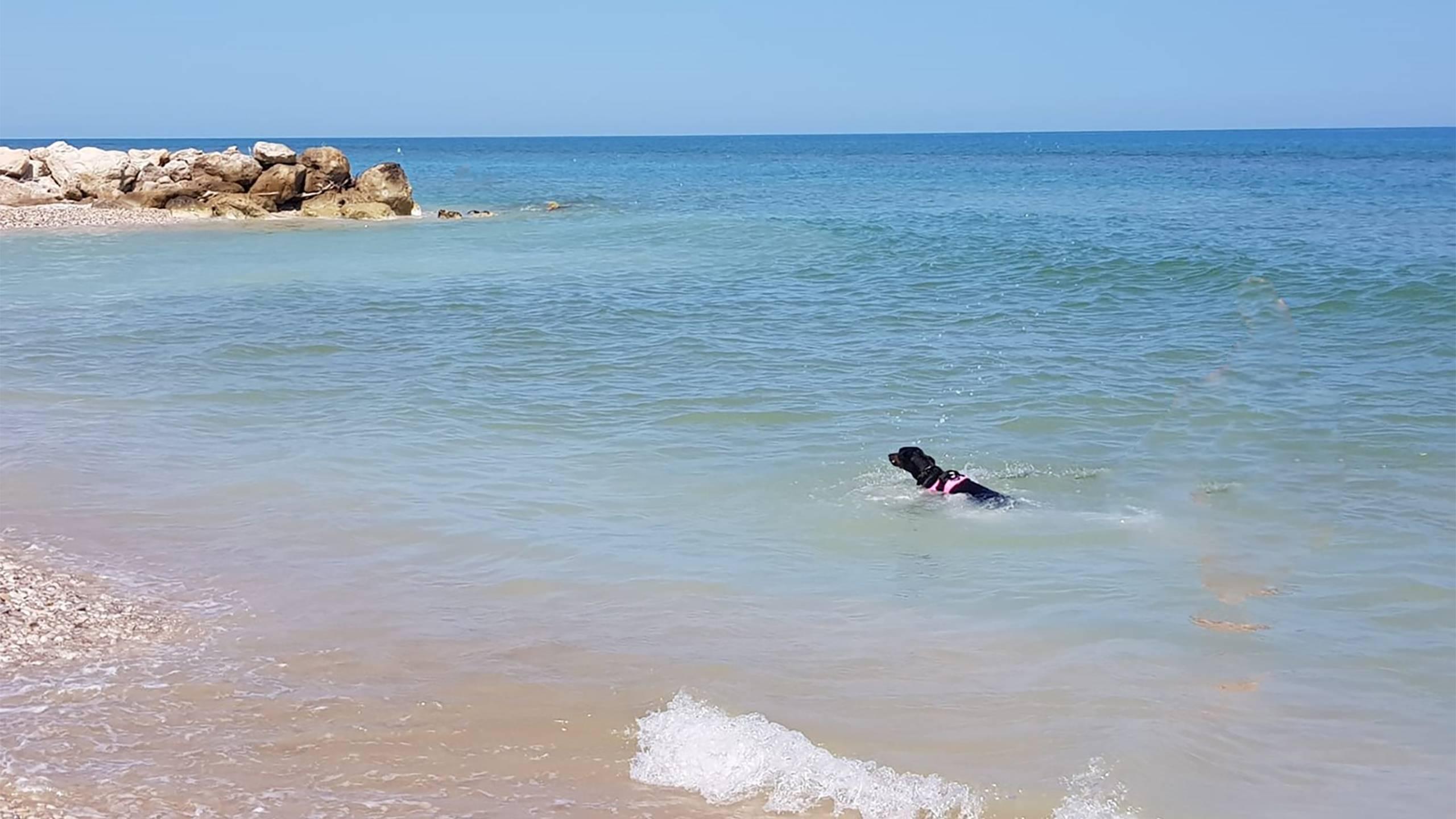 pineto-beach-village-e-camping-bau-beach-1
